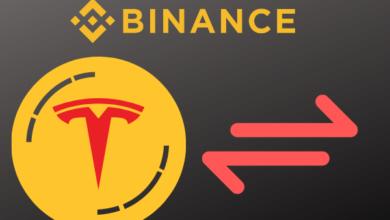Binance Tesla Token